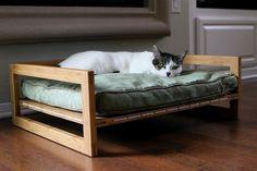 PET LOUNGE STUDIOS CAT LOUNGE