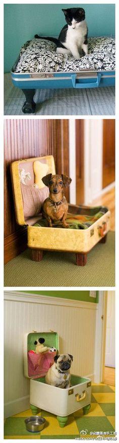 Old suitcase pet beds-love this vintage-y look and reuse of old things! #pets #DIY