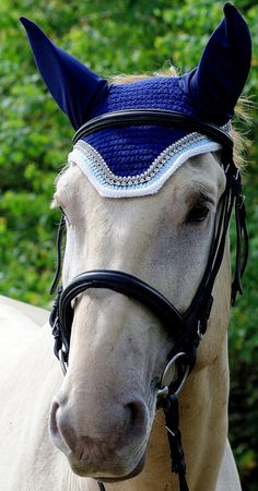 cb03d86ecf38 16 Best Fly bonnet ideas images   Horses, Equine photography, Horse fly