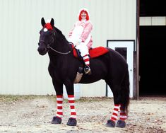 Horse costume. Glaedr and I as Raggedy Ann and Andy.
