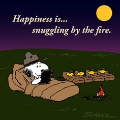 Snoopy & Woodstock Happiness is snuggling by the fire.