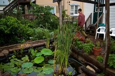 Take your permaculture practice beyond the garden.