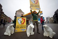 help prevent big oil from destroying the arctic: save the arctic Save The Arctic, Big Oil, Basel, Shells, Tours, Arctic, Conch Shells, Clams, Seashells