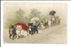 Postcard-Fantasy-Cat-Parade-Umbrellas-Ribbons