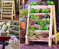 Vertical Garden Planters | DIY Tag