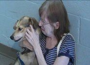 A dog that disappeared in Indiana was found 500 miles away from home.