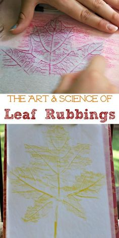 The BEST Fall craft for Kids! Explore leaf rubbings by experimenting with different types of art supplies and looking at the science of leaves too!