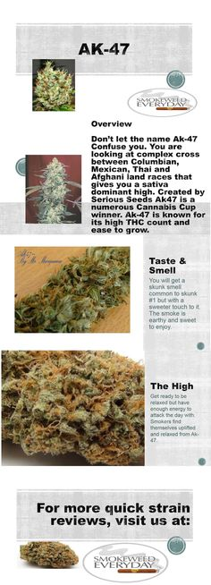 SmokeWeedEveryDay.Org for more Quick Strain Reviews