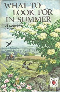 """What to look for in Summer"" from Ladybird books"