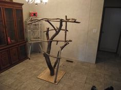 Tree Stands - Parrot Forum - Parrot Owner's Community *Also see list of safe woods to use