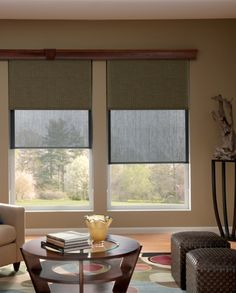 Dual Roller Shades. Gives you the option of using a solar shade to reduce glare/heat during the day and a blackout shade when you need privacy.