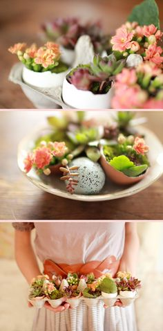 AWESOME egg/egg carton DIY project: Items needed: Dirt (we used potting soil), egg shells, moss, succulents, and flowers (optional). Great for Easter!