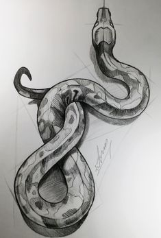 How to draw s Snake. Dark Art Drawings, Pencil Art Drawings, Art Drawings Sketches, Animal Drawings, Cool Drawings, Drawings Of Snakes, Realistic Drawings Of Animals, Pencil Sketches Of Animals, Animal Sketches Easy