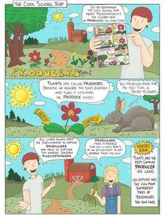 Ecosystems: Producers, Consumers and Decomposer Lesson Plan / Activity Science Comics, Education Middle School, Reluctant Readers, Visual Learning, Free Comics, Photosynthesis, Too Cool For School, Earth Science, Graphic Organizers