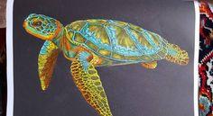 Sea Turtle By Susan Lowe Coloring BooksAdult