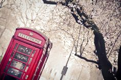 London - Photography by Elisabeth Perotin Floral Photography, London Photography, Landline Phone, Find Image, We Heart It, Place, Bliss, British, Travel