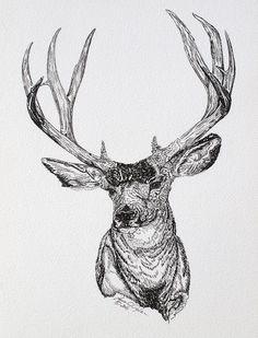 Las 52 Mejores Imágenes De Dibujos De Venados A Lápiz Deer Drawing