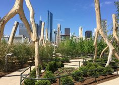 MAGGIE DALEY PARK in Chicago  via @PureWow