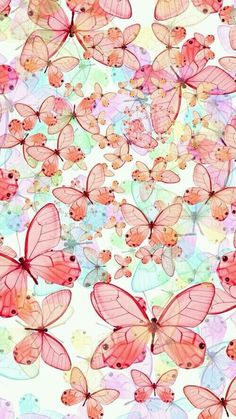 Butterflies/Pink/Love