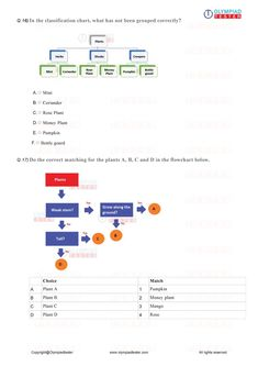 Class 1 Science Olympiad Course with Printable worksheets & Online test series Online Mock Test, Online Test Series, Online Tests, Olympiad Exam, Math Olympiad, Sample Question Paper, Sample Paper, Exam Calendar, Printable Worksheets