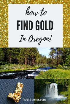 If you're a gold prospector looking to find oregon gold, then this article will be very useful! It lists some of the best places for Oregon gold panning and Oregon gold prospecting. Loaded with great info! Oregon Road Trip, Oregon Travel, Travel Usa, Road Trips, Oregon Vacation, Gold Mining Equipment, Panning For Gold, Gold Prospecting, Rock Hunting