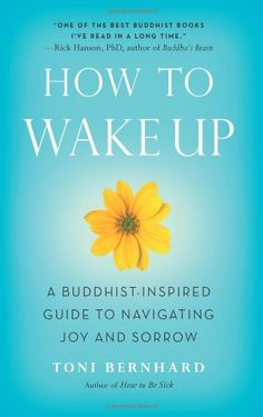 How to Wake Up: A Buddhist-Inspired Guide to Navigating Joy and Sorrow by Toni Bernhard http://www.amazon.com/dp/1614290563/ref=cm_sw_r_pi_dp_iWijvb1DHMC3Z