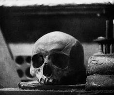 black and white animated GIF. #skulls #macabre #creepy