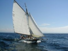 Sloop Friend Ship, Burlington, VT  Really Nice Captain.... wonderful ride!