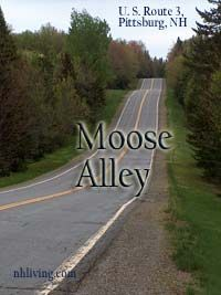 moose alley, Pittsburg New Hampshire Live Free Or Die, New England States, New Hampshire, Amazing Places, The Great Outdoors, Places To See, Moose, The Good Place, Things I Want