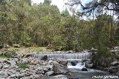 Meditar junto al río en el Valle del Cocora, Colombia