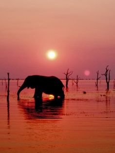 Lake Kariba,Zambia: