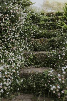 Torrecchia Vecchia garden Italy designed by Dan Pearson | House & Garden