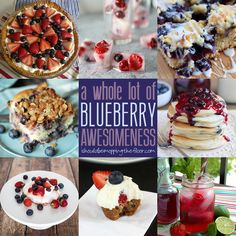 A whole bunch of blueberry recipes packed with deliciousness!