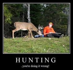 Hunting, you are doing it wrong