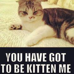 Meredith <3