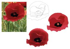 This assignment was about producing an illustration of a poppy picture, I started with make a simple line drawing, and I did this by picking out shapes from picture. Then I used the eyedropper tool to get flat colours for the poppy picture. The next design was developed by me using gradient mesh, and this tool made the poppy become more life like.