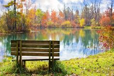 Wooden Bench on the Bank Free Stock Photo
