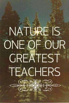 A Natureza é um dos nossos maiores professores.  #now #nowmaste #namaste