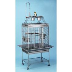 Avian Adventures Chiquita Playtop Bird Cage