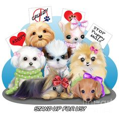 Puppies Manifestation-STAND UP FOR US!- By Catia Cho Puppies: Yorkie, Doxi, Maltese, Shih-Tzu, Pom, Chihuahua, Mixed Breed. All rights reserved ©