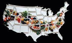 Карта США из фарфоровых тарелок