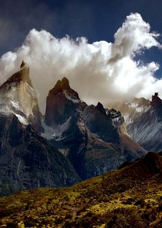 Torres del Paine - Patagonia #Mountain #Outdoors