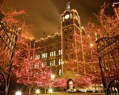 Louis showcases its holiday spirit with many Christmas light displays. Here are the biggest and best holiday lights in the St. Best Christmas Light Displays, Best Christmas Lights, Holiday Lights, Christmas Fun, Christmas Glitter, Holiday Fun, Glitter Images, Photo Packages, St Louis Mo