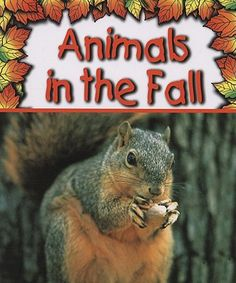 Book, Animals in the Fall by Gail Saunders-Smith