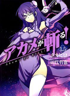 Anime Akame Ga Kill. Sheele