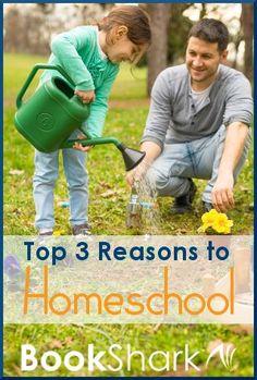 Top 3 Reasons to Homeschool
