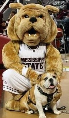 Mississippi State Bulldogs mascots Bully XIX (Tonka) and his costumed counterpart.