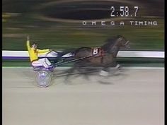 Harness Racing,Moonee Valley-1983 A.G Hunter Cup (Popular Alm-V.J.Night) - YouTube
