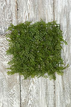 6.99 SALE PRICE! Create a garden-fresh faux backdrop with these plastic Fern Mats. Each realistic-looking mat is made of an interlocking plastic grid base me...