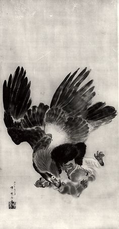 Eagle Carrying Off a Monkey Kawanabe Kyôsai (Japanese, Date: century Culture: Japan Medium: Color on silk Dimensions: 70 x 33 in. x cm) Classification: Painting Japanese Bird, Japanese Prints, Japanese Tattoo Art, Japanese Painting, Art Chinois, Eagle Art, Art Asiatique, Art Japonais, Rabe